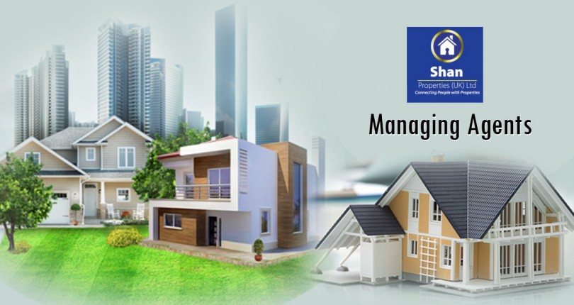 Professional Managing Agents Assure for Suitable Property Selection